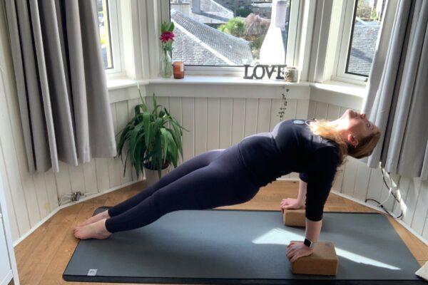 elaine the yoga transformative studio